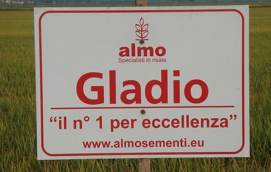 news_singola-1100x825-gladio